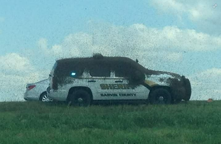 Semi Hauling Honey Bee accident Oklahoma, le transport par camion abeilles renverse dans l'Oklahoma, Semi Hauling Honey Bee accident Oklahoma septembre 2015, le transport par camion abeilles renverse dans l'Oklahoma septembre 2015, le transport par camion abeilles renverse dans l'Oklahoma photo, camions abeilles transporter renverse dans l'Oklahoma vidéo, Semi accident Hauling Honey Bee Oklahoma photo et vidéo