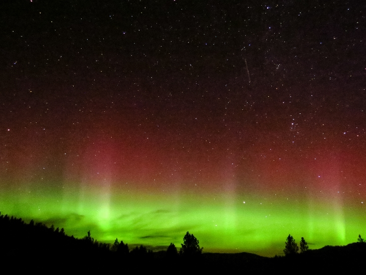 aurora red and green, red aurora, red aurora WV, red aurora West Virginia, red aurora virginia, red aurora WV september 9 2015, solar storm september 9 2015, red aurora photo, Blood red auroras in the sky of Spruce Knob, West Virginia. Photo by Darren Shank