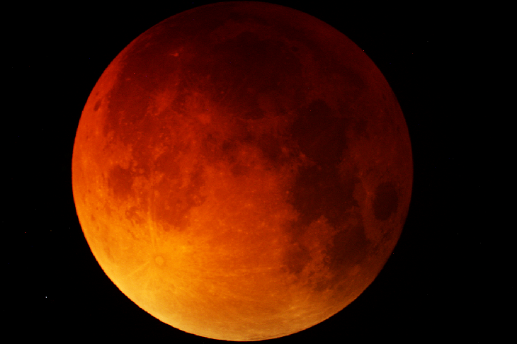 blood moon, blood moon pictures, blood moon pictures september 27 2015, lunar eclipse september 2015 pictures, supermoon lunar eclipse pictures 2015, supermoon total eclipse, supermoon eclipse september 2015, best pictures total lunar eclipse september 2015, best photos blood moon september 27 2015, blood moon lunar eclipse best pictures, A dark blood red supermoon in the sky of Cochranville, Pennsylvania on September 27, 2015