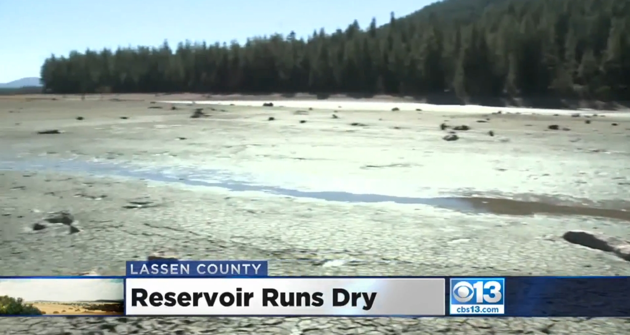 california lake runs dry overnight, California Lake Mysteriously Runs Dry Overnight, Killing Thousands Of Fish, Mountain Meadows reservoir runs dry overnight, Walker Lake runs dry overnight killing thousands of fish, reservoir lake runs dry overnight killing thousands of fish, fish mass die-off in California as reservoir runs dry overnight