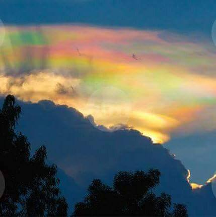 fire rainbow mexico, fire rainbow Leon mexico, fire rainbow leon guanajuato mexico, fire rainbow mexico september 8 2015, fire rainbow photo mexico