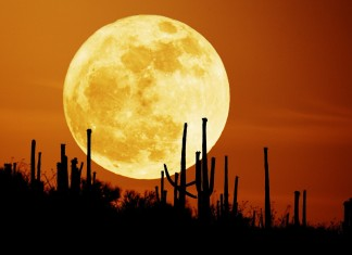 Harvest Moon, Harvest Moon september, Harvest Moon largest moon, what is the largest moon in the year, Harvest Moon largest moon in the year, Harvest Moon lunar eclipse, blood moon, blood moon lunar exclipse september 27 2015, astronomical events for september 2015, sky phenomenon september 2015