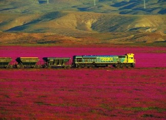 But the Atacama Desert was already reported blooming in May 2015.