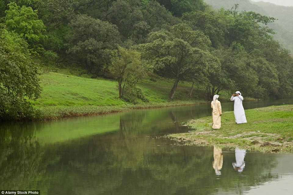http://strangesounds.org/wp-content/uploads/2015/10/rainforest-salalah-desert-monsoon-4.jpg