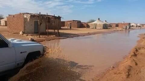 sahara floods, sahara floods october 2015, flooding sahara refugee camp october 2015, flooding sahara tindouf, floods destroy houses and tents in sahara tinduf, algeria sahara floods 2015, floods in tinduf algeria october 2015, sahara floods october 2015 picture