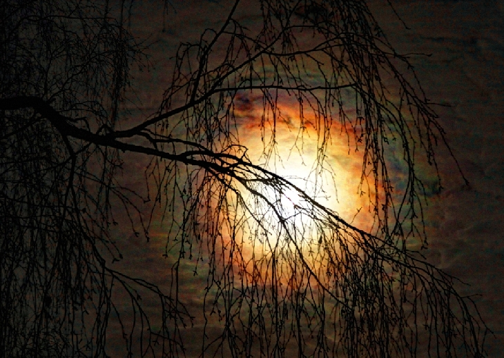Full Beaver Moon, november 2015 full moon pictures, lunar corona full moon november 2015, lunar halo beaver full moon november 2015 picture, full moon corona, full moon halo november 2015, lunar halo beaver full moon november 2015, lunar corona full moon november 2015, Etruscan Vase Moonrise picture, Perfect atmospheric conditions in Maine led to an Etruscan Vase Moonrise of the Full Beaver Moon., This colourful lunar corona captured in Canada shows beautiful gradations from blue to orange, This picture of November 2015 full moon over Latvia could be used in a horror movie, Again the colorful lunar corona appeared in the sky of Plavinas