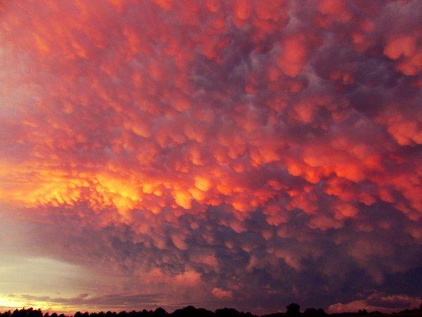 mammatus, mammatus clouds, mammatus pictures, mammatus clouds nsw, mammatus clouds nsw australia, mammatus clouds november 2015, mammatus clouds october 2015, mammatus pics 2015