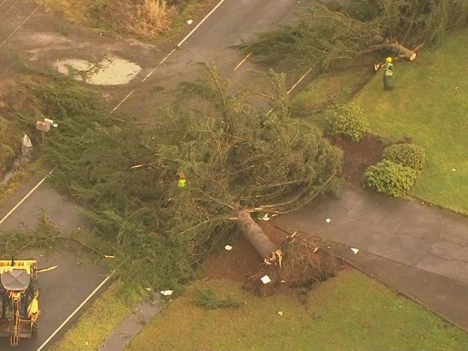 Rare Tornado Hits Battle Ground Washington Srange Sounds
