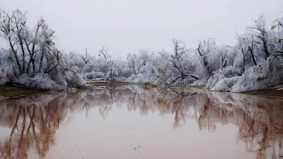 Deadly ice storm in Oklahoma and Kansas pictures and ...