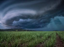 supercell shelf cloud, supercell picture, shelf cloud picture, shelf cloud dk photography, shelf cloud nsw storms, best shelf cloud pictures, best supercell picture, dk photography, This supercell shelf cloud was growing in the sky of NSW, Australia on January 23, 2016.