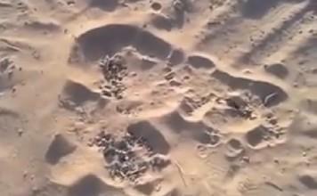 bubbling sand gaza, bubbling sand gaza video, gaza bubbling sand, sand is bubbling in gaza, gaza sand bubbling video, video of bubbling sand gaza, video of bubbling sand in Gaza