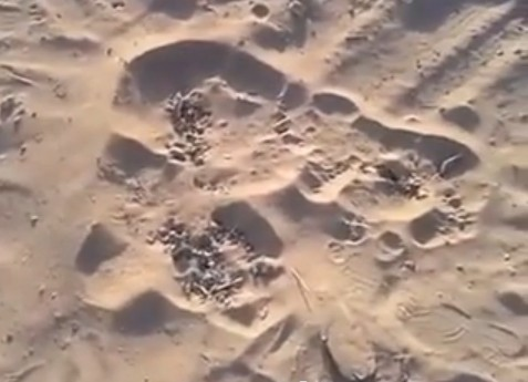 bubbling sand gaza, bubbling sand gaza video, gaza bubbling sand, sand is bubbling in gaza, gaza sand bubbling video, video of bubbling sand gaza, video of bubbling sand in Gaza