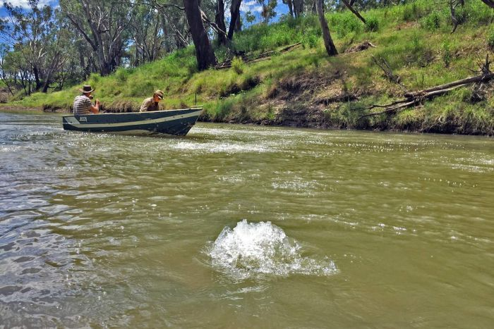mysterious methane bubbling Queensland Condamine River, condamine river methane river, condamine river bubbling, mysterious bubbling condamine river, queensland condamine river bubbling, condamine river bubbling intensifies, methane river condamine river