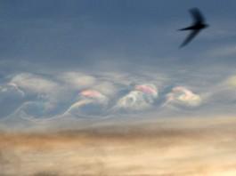 Iridescent Kelvin-Helmholtz Clouds, Iridescent Kelvin-Helmholtz Clouds pictures, Iridescent Kelvin-Helmholtz Clouds zimbabwe, Iridescent Kelvin-Helmholtz Clouds africa, Iridescent Kelvin-Helmholtz Clouds march 2016 mutare