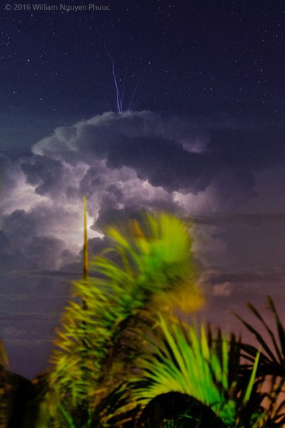 Pulsating blue jet fires up from the top of a thunderstorm over Darwin, Australia Blue-jet-thunderstorm-picture