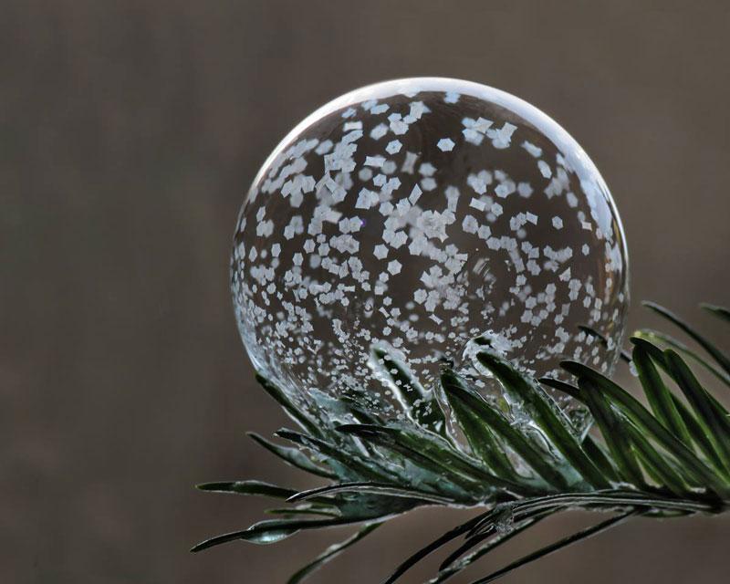 frozen soap bubbles, frozen soap bubbles pictures, frozen soap bubbles photo, How To Make Frozen Soap Bubbles, Freezing Soap Bubbles