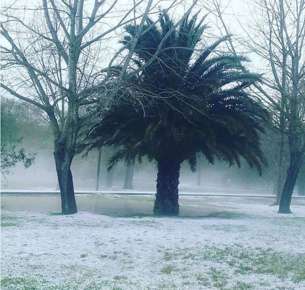 hailstorm lisbon, Granizo Grande Lisboa, Granizo Grande Lisboa foto, Granizo Grande Lisboa video, hailstorm lisbon march 2016, hailstorm lisbon march 2016 photo, hailstorm lisbon march 2016 video