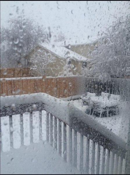 snow colorado march 2016, snow storm colorado march 2016, snow blizzard colorado march 2016, snow colorado march 2016 pictures, snow colorado march 2016 videos, snow colorado march 2016 pictures and videos