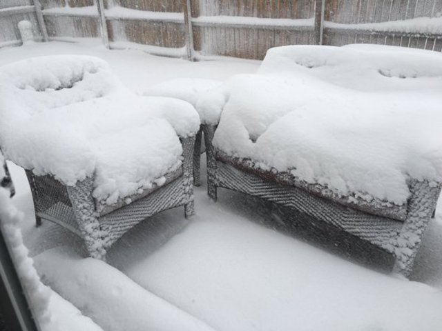 snow colorado march 2016, snow storm colorado march 2016, snow blizzard colorado march 2016, snow colorado march 2016 pictures, snow colorado march 2016 videos, snow colorado march 2016 pictures and videos