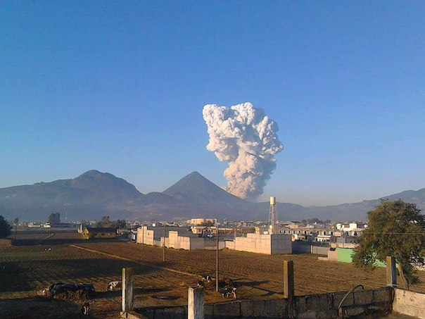 Santa Maria volcano eruption april 11 2016, Santiaguito volcano eruption april 11 2016, Gagxanul volcano eruption april 11 2016, Santa Maria volcano eruption april 11 2016 pictures, Santa Maria volcano eruption april 11 2016 video