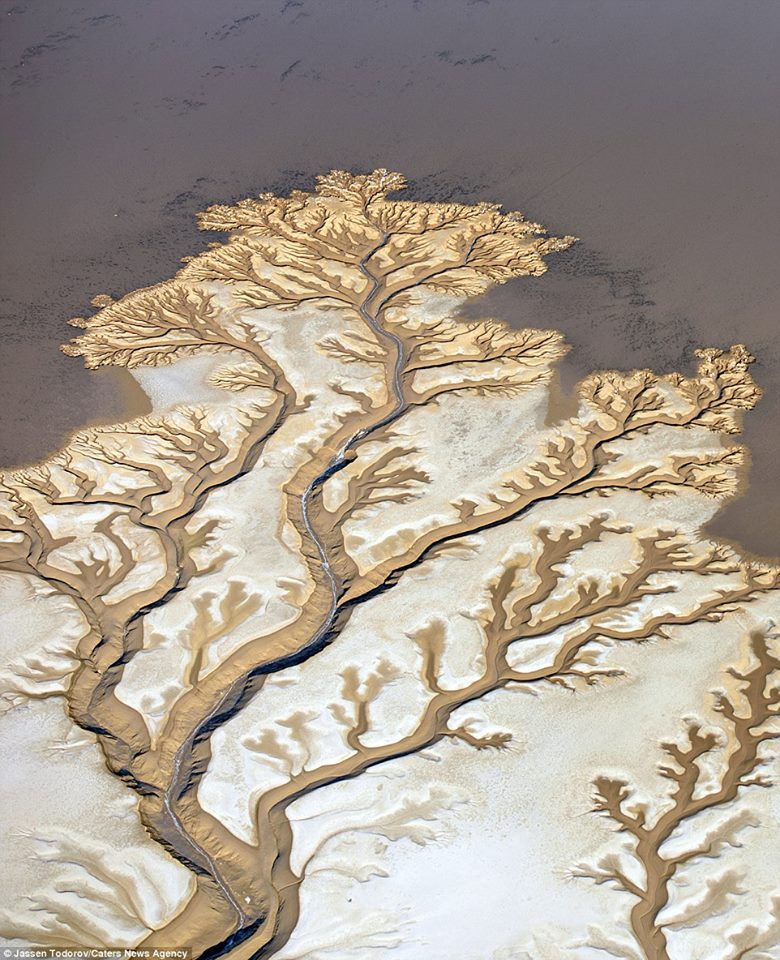 colorado river, colorado river picture, colorado river aerial picture, colorado river satellite picture, colorado river from above picture, colorado river aerial picture,