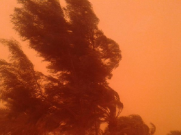 sandstorm algeria blood red sky, sand storm algeria, algeria sand storm april 2016, algeria red sky sandstorm april 2016, dust storm alregia april 2016