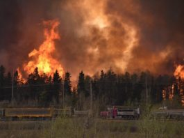 wildfire Fort McMurray, wildfire Fort McMurray alberta may 2016, fire wildfire Fort McMurray alberta may 2016 video pictures, wildfires Fort McMurray, wildfire Fort McMurray may 2016, Fort McMurray wildfire pictures and video, video wildfires, canada wildfire video pictures, alberta wildfire picture video may 2016