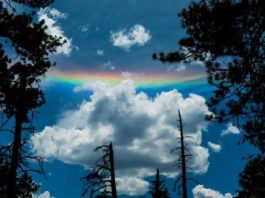 circumhorizontal arc arizona, fire rainbow arizona, fire rainbow flagstaff arizona, circumhorizontal arc flagstaff arizona, circumhorizontal arc arizona june 2016 pictures, circumhorizontal arc arizona 2016 photo