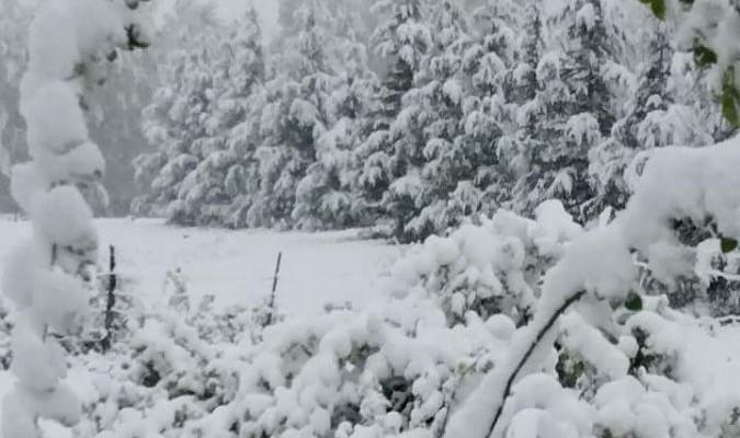 snow guatemala june 2016, snow guatemala june 2016 photo, guatemala record snowfall, snow guatemala june 2016, worst snowfall guatemala in 30 years june 2016