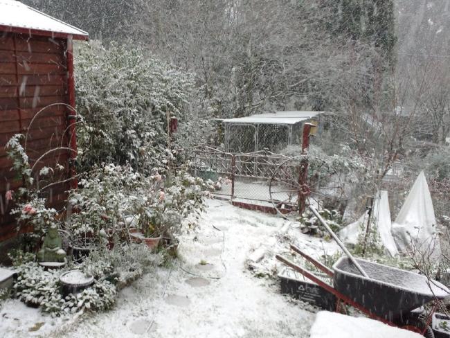 snow New South Wales australia, snow blue mountains australia, snow australian alps, snow storm australia june 2016, snow storm new south wales australia june 2016, snow New South Wales australia pictures, snow New South Wales australia photos, snow New South Wales australia video