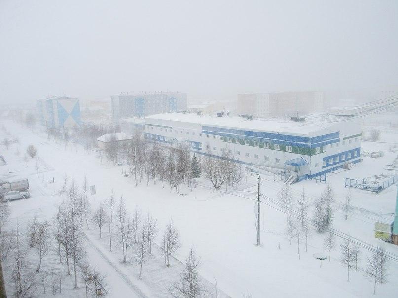 snowstorm russia june 2016, blizzard russia june 2016, anomalous snowstorm russia june 2016, В Надыме сильный ветер разорвал шатер цирка
