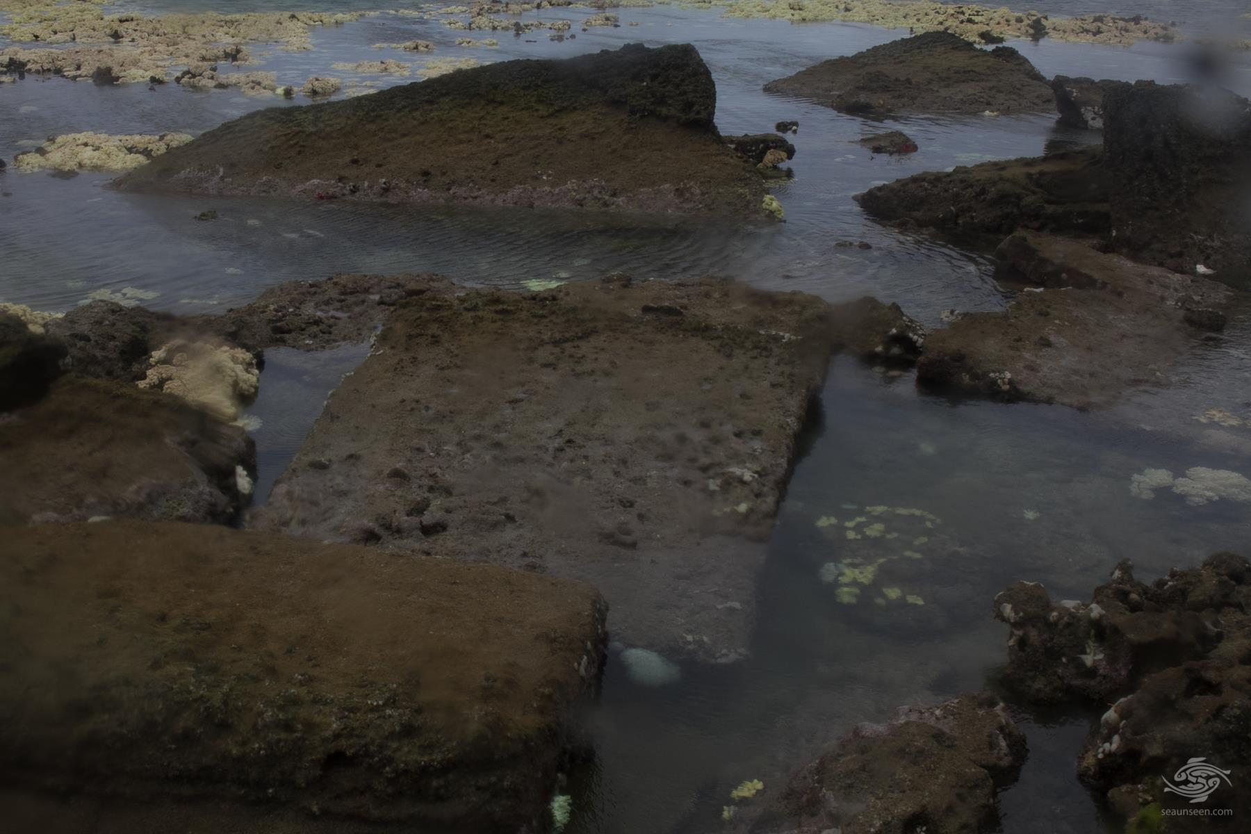 2,000-year-old lost sunken city of Rhapta found in Tanzania, underwater city discovered in Tanzania, tanzania underwater city, tanzania sunken city,rhapta discovery, sunken city rhapka discovered tanzania, underwater city tanzania, underwater city tanzania discovery