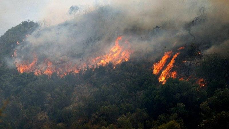 chios wildfire greece, chios wildfire, chios fire, greece wildfire, greece wildfire july 2016, chios wildfire july 2016, chios fire july 2016 picture, chios greece wildfire july 2016 video