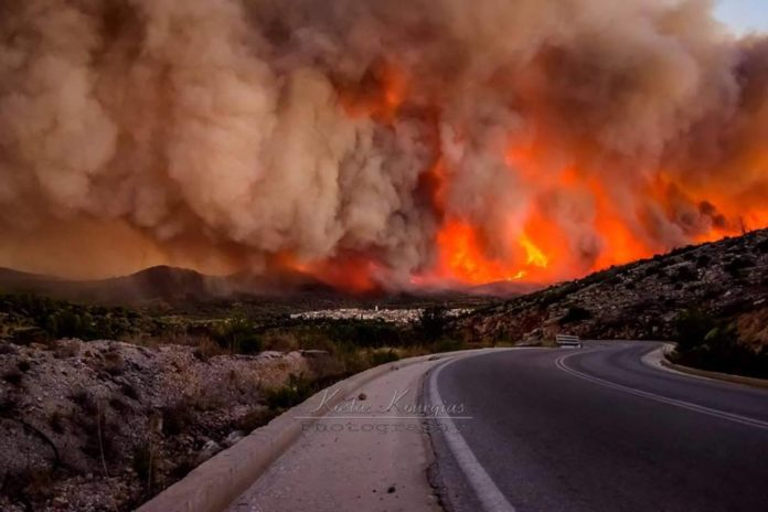 chios wildfire greece, chios wildfire, chios fire, greece wildfire, greece wildfire july 2016, chios wildfire july 2016, chios fire july 2016 picture, chios greece wildfire july 2016 video