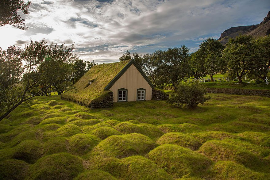 grass roof, grass roof scandinavia, best grass roof scandinavia, best grass roofs, green roofs pictures, best green grass roofs scandinavia, best eco grass roof pictures