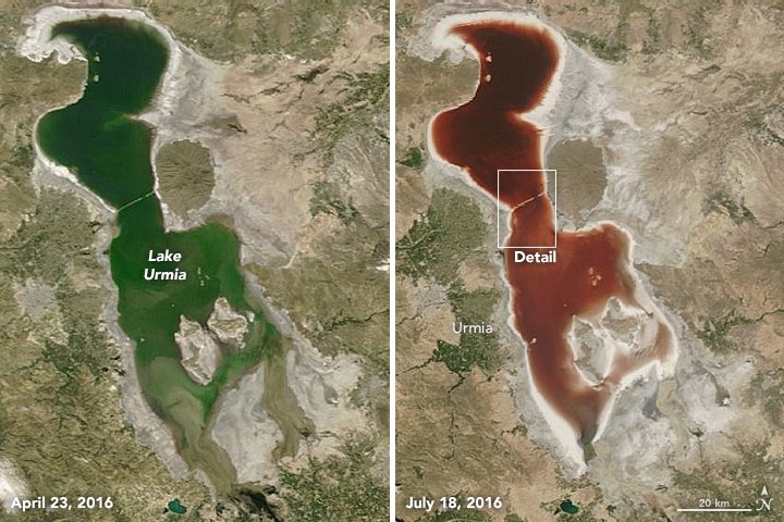 iran lake urmia blood red, lake urmia blood red, water lake urmia red, red water iran lake, iran lake blood red, lake in iran turns red video, iran lake urmia blood red pictures