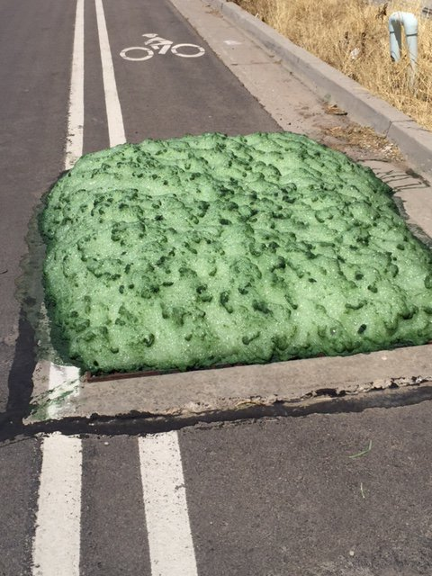 mysterious green foam bluffdale utah, green foam bluffdale utah, green foam utah, green foam bluffdale, mystery green foam bluffdale utah video, mystery green foam bluffdale utah pictures, mystery green foam bluffdale utah july 2016