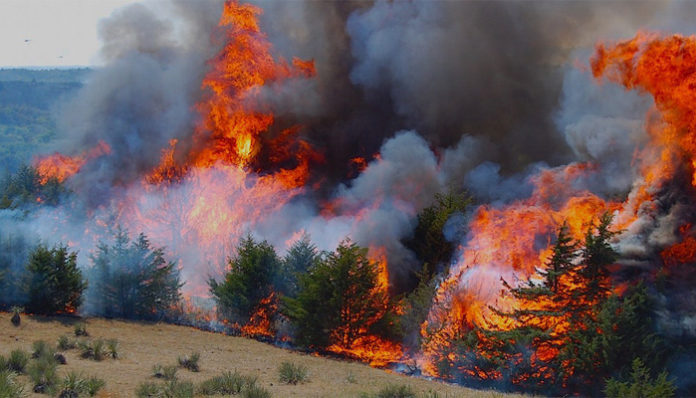wildfire western usa, wildfire california, wildfire washington, wildfire utah, wildfire wyoming, wildfire oregon, wildfire montana, wildfire idaho, wildfire western us august 2016, wildfires us august 2016 video