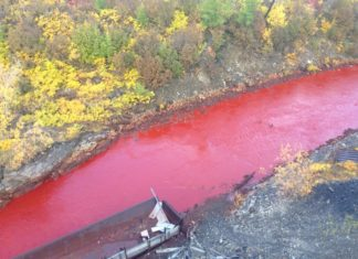 blood red river russia, mysterious blood red river russia, unexplained blood red river russia, blood red river norilsk russia, blood red river russia september 2016, blood red river arctic russia 2016