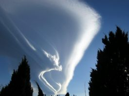 cloud, animal in clouds, strange forms in clouds, weird clouds, cloud formation