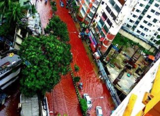 blood red streets dhaka, dhaka streets blood red, flooded streets dhaka blood red, blood dhaka street, Eid al-Adha 2016, Eid al-Adha 2016 dhaka, dhaka slaughter