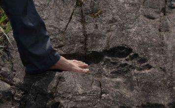 giant human footprint china, giant foot china august 2016, giant human footprint discovered in china 2016, footpring of giant fossilized in rock china august 2016