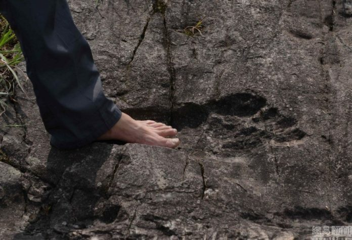 giant human footprint china, giant foot china august 2016, giant human footprint discovered in china 2016, footpring of giant fossilized in rock china august 2016