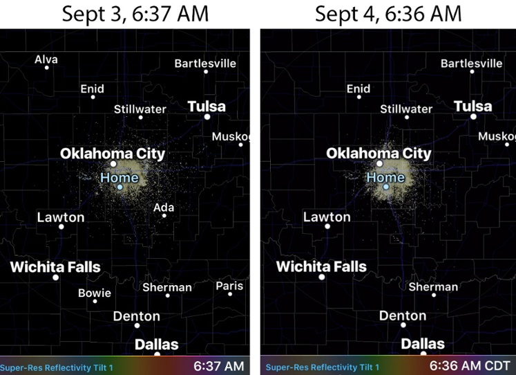 oklahoma earthquake birds, oklahoma earthquake, oklahoma, oklahoma earthquake bird prediction