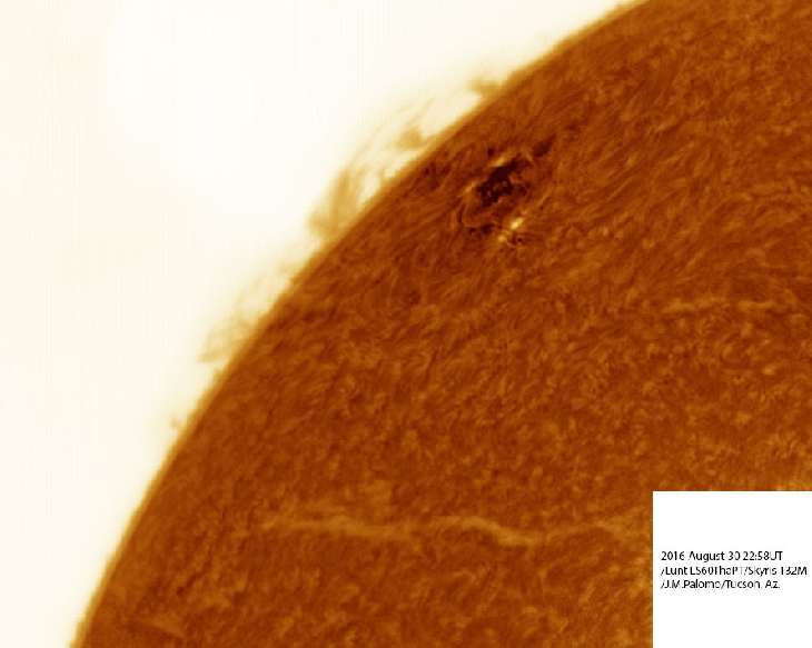 solar filament, filament sun, giant sun filament, huge sun filament grows on sun