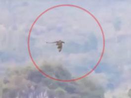 flying dragon china, flying dragon china video, video flying dragon china, flying dragon china fake, flying dragon china drone