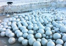 ice balls, ice balls russia, ice balls michigan, ice balls arctic, huge frozen spheres russia, ice balls 2016, ice balls november 2016