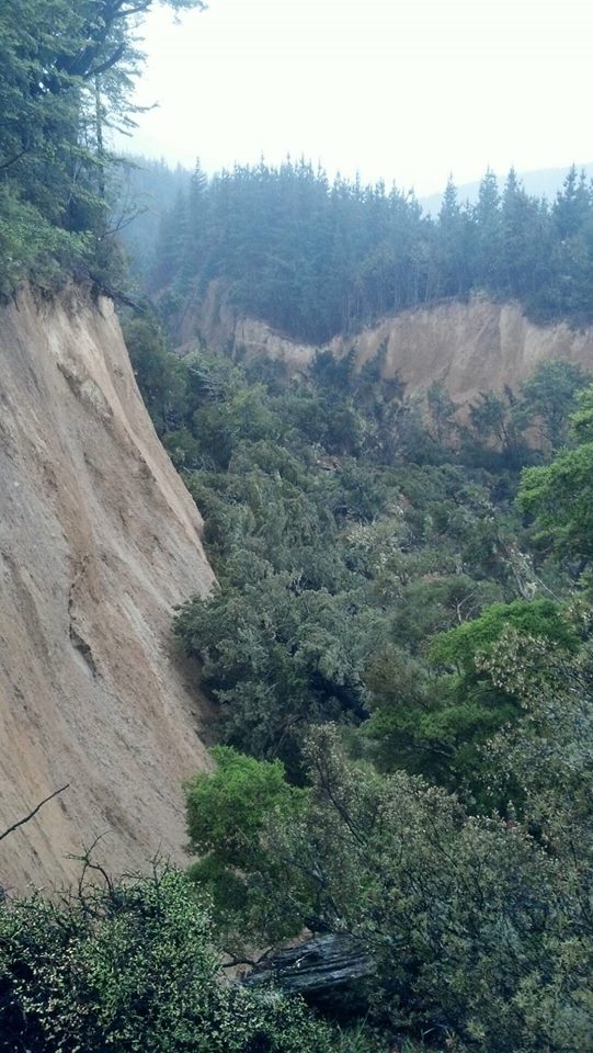 giant crack new zealand, new valley giant crack New Zealand quake hurunui district, fissure in ground hurunui new zealand, new zealand earthquake forms new valley hurunui district, giant crack hurunui district NZ, NZ earthquake giant crack hurunui district