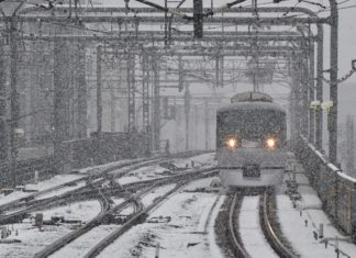 tokyo snow, Tokyo sees first November snow in more than 50 years, Tokyo sees first November snow in more than 50 years video, tokyo snow november 2016, tokyo japan snow video, tokyo snow record november 2016