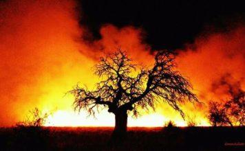 argentina fire, argentina fire january 2017, argentina fire 2017, argentina fire pictures, argentina fire video